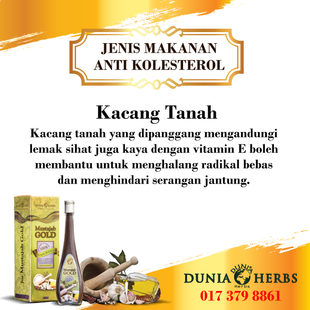 Anti Kolesterol