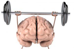 menyihatkan otak